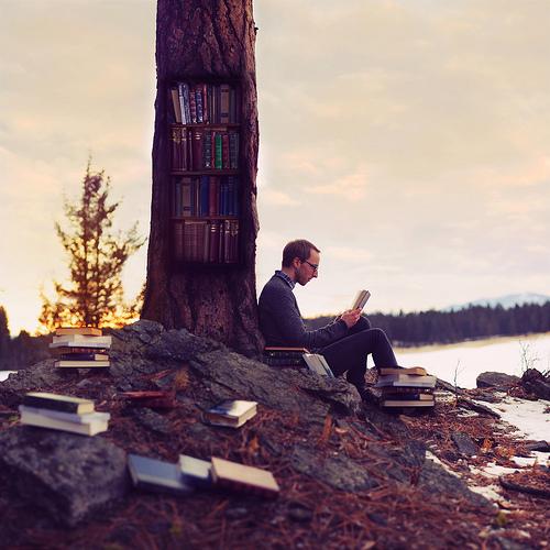 O amor pela literatura expressado de uma maneira diferente